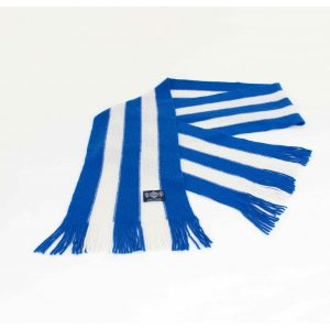 Savile Rogue vertical striped scarf in Royal blue and white cashmere